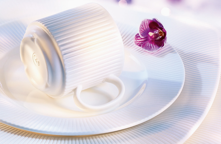 Restaurant Quality Plates & Dinnerware Collections are Virtually Indestructible